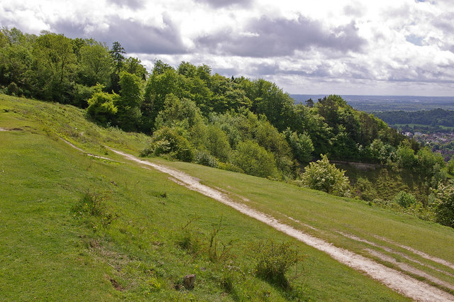 Colley Hill - geograph.org.uk - 1316215