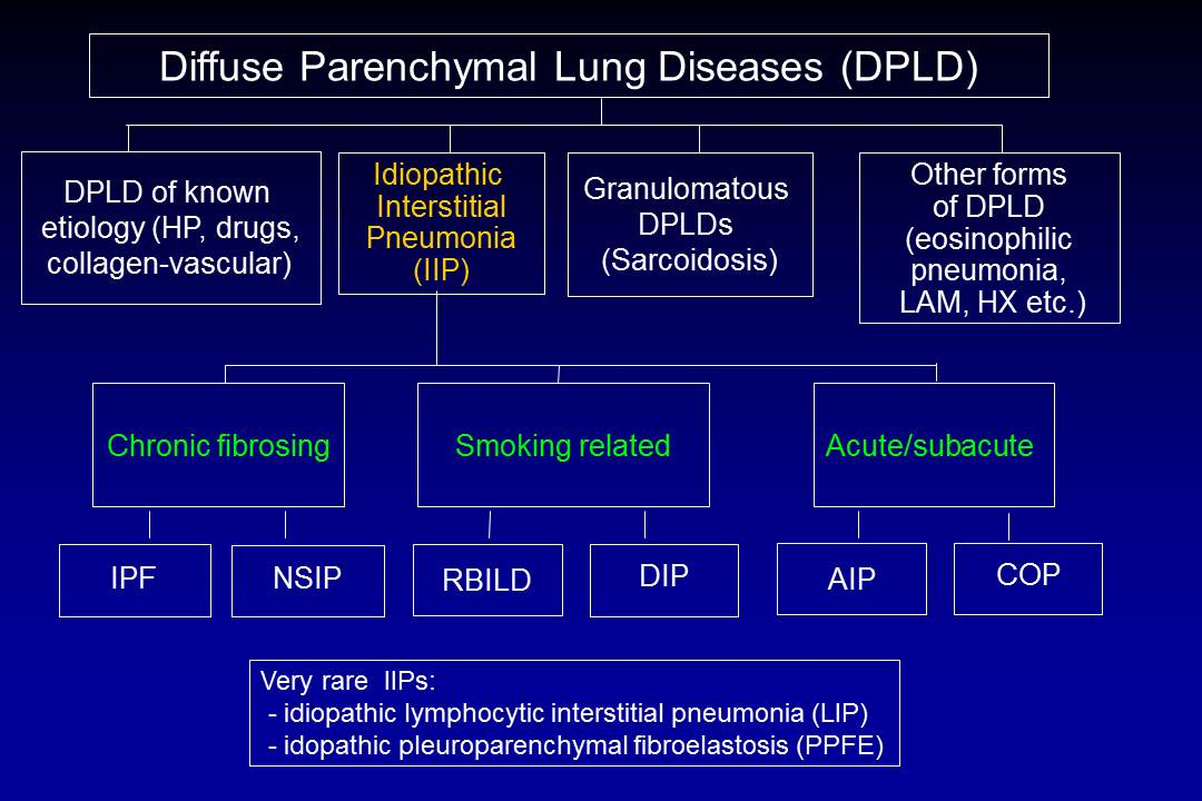 file diffuse parenchymal lung diseases jpg wikimedia commons