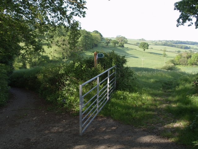 East Devon Way below Bulmoor - geograph.org.uk - 441693