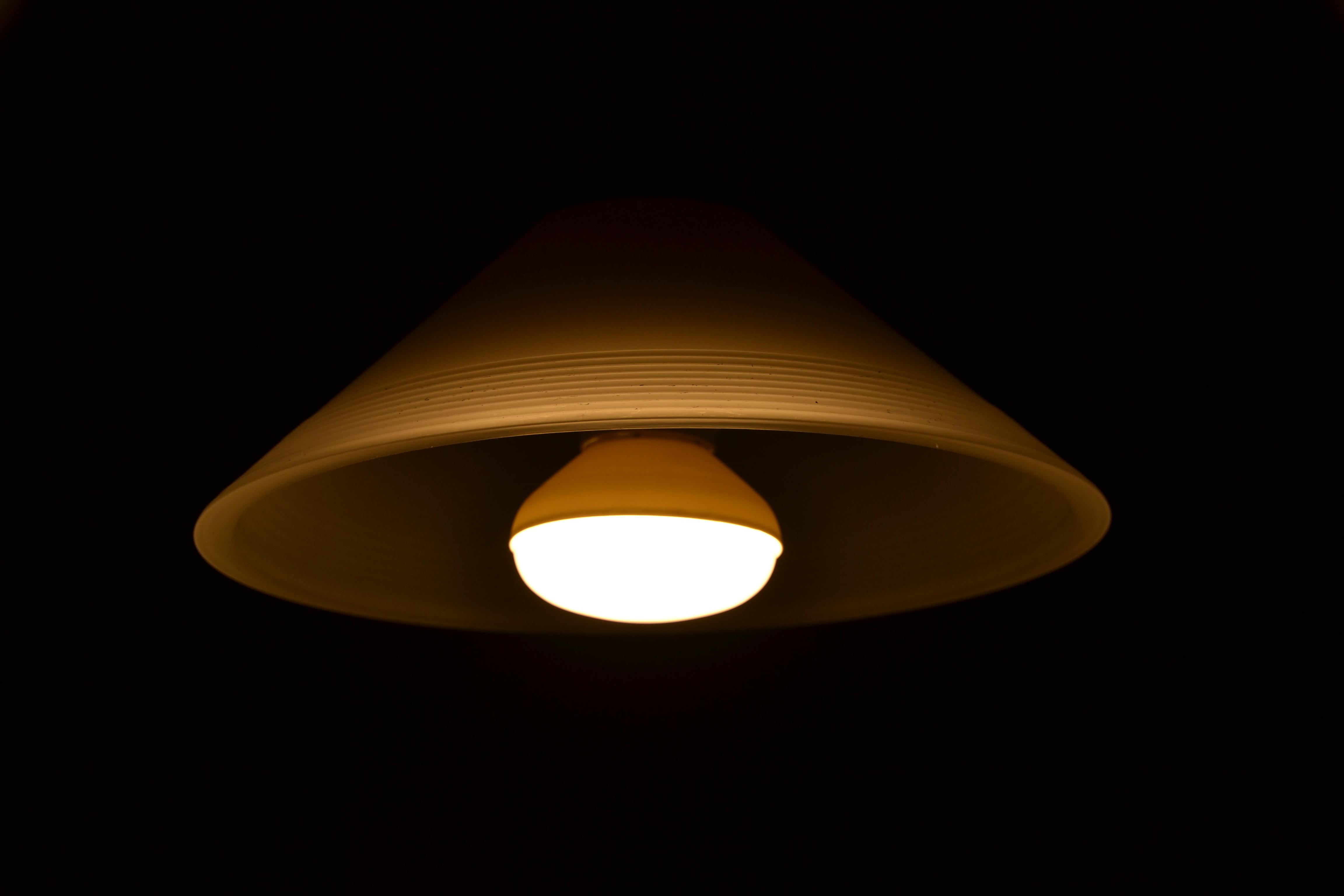 FileElectric Ceiling LampJPG