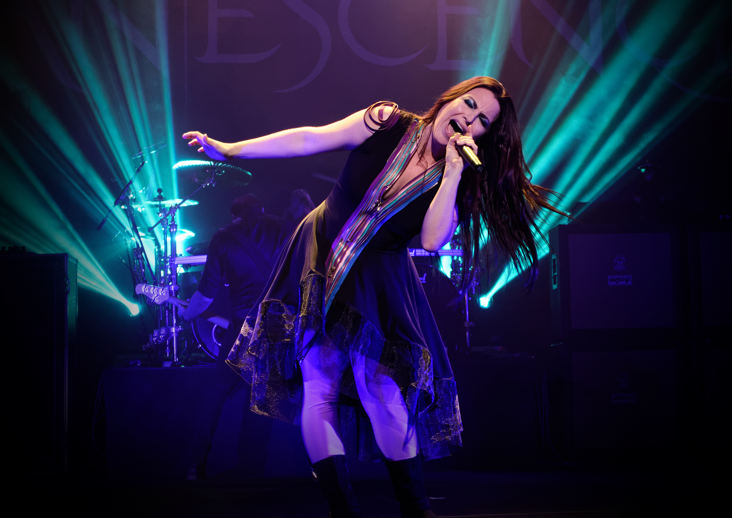 File:Evanescence at The Wiltern theatre in Los Angeles, California 02.jpg -  Wikimedia Commons