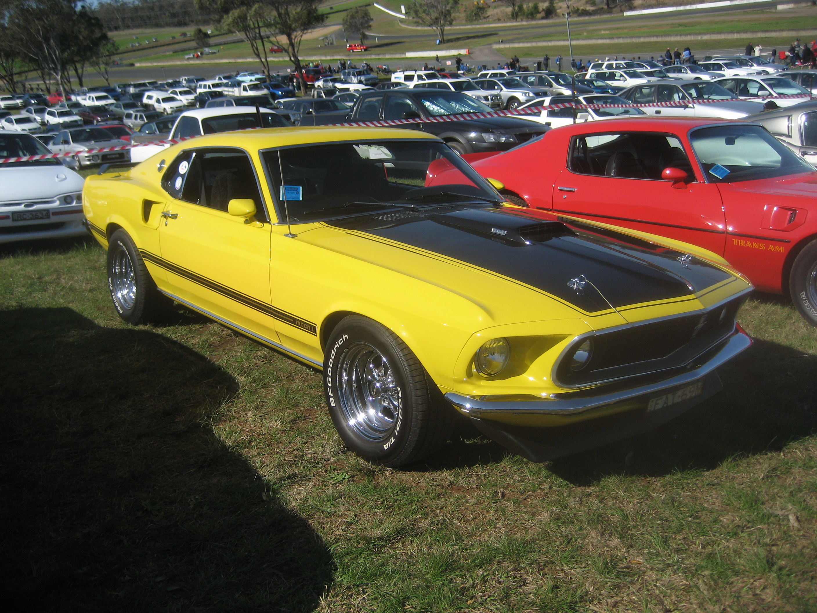Fileford mustang 351 mach 1 1969 3 jpg