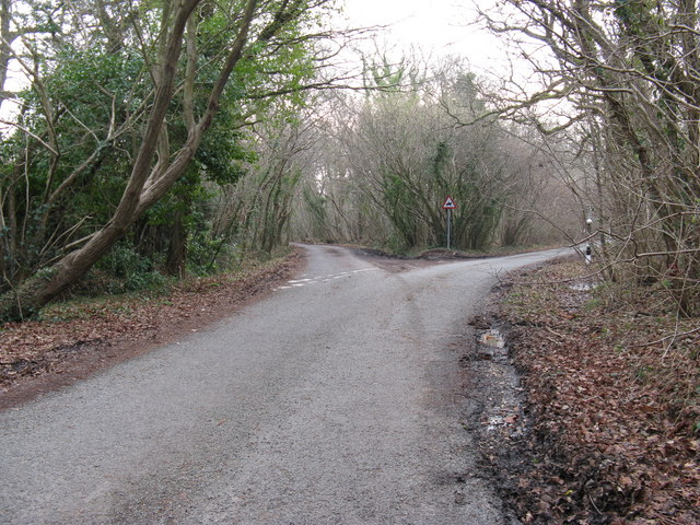 Fork in road - geograph.org.uk - 1142202
