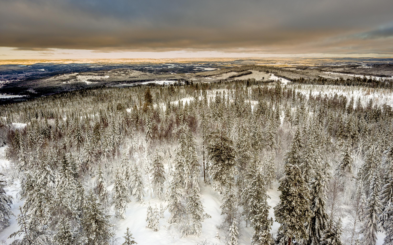 Uddeholm Jobs in Hagfors, Varmland County, Sweden