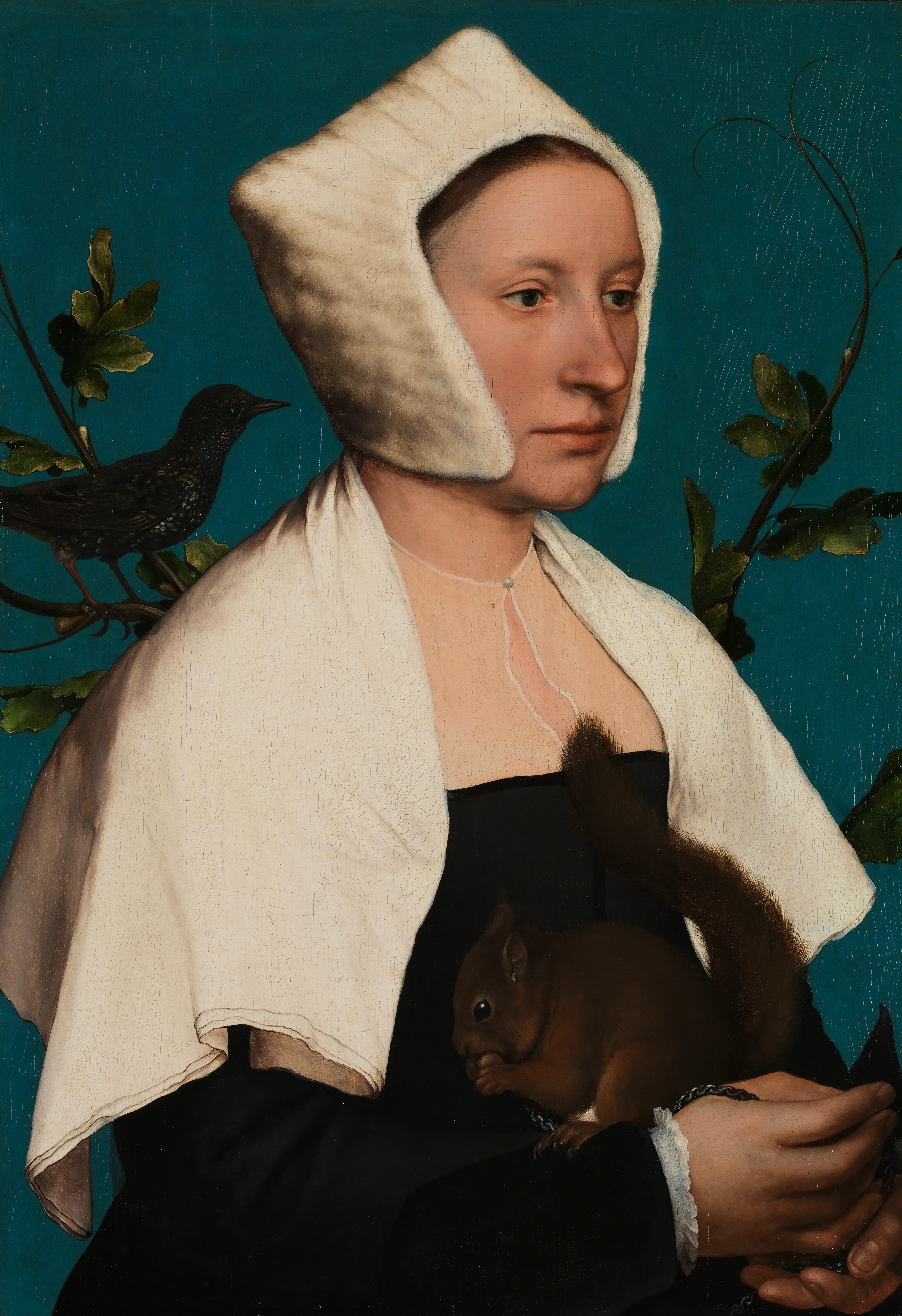 Hans Holbein, Lady With A Squirrel And A Starling