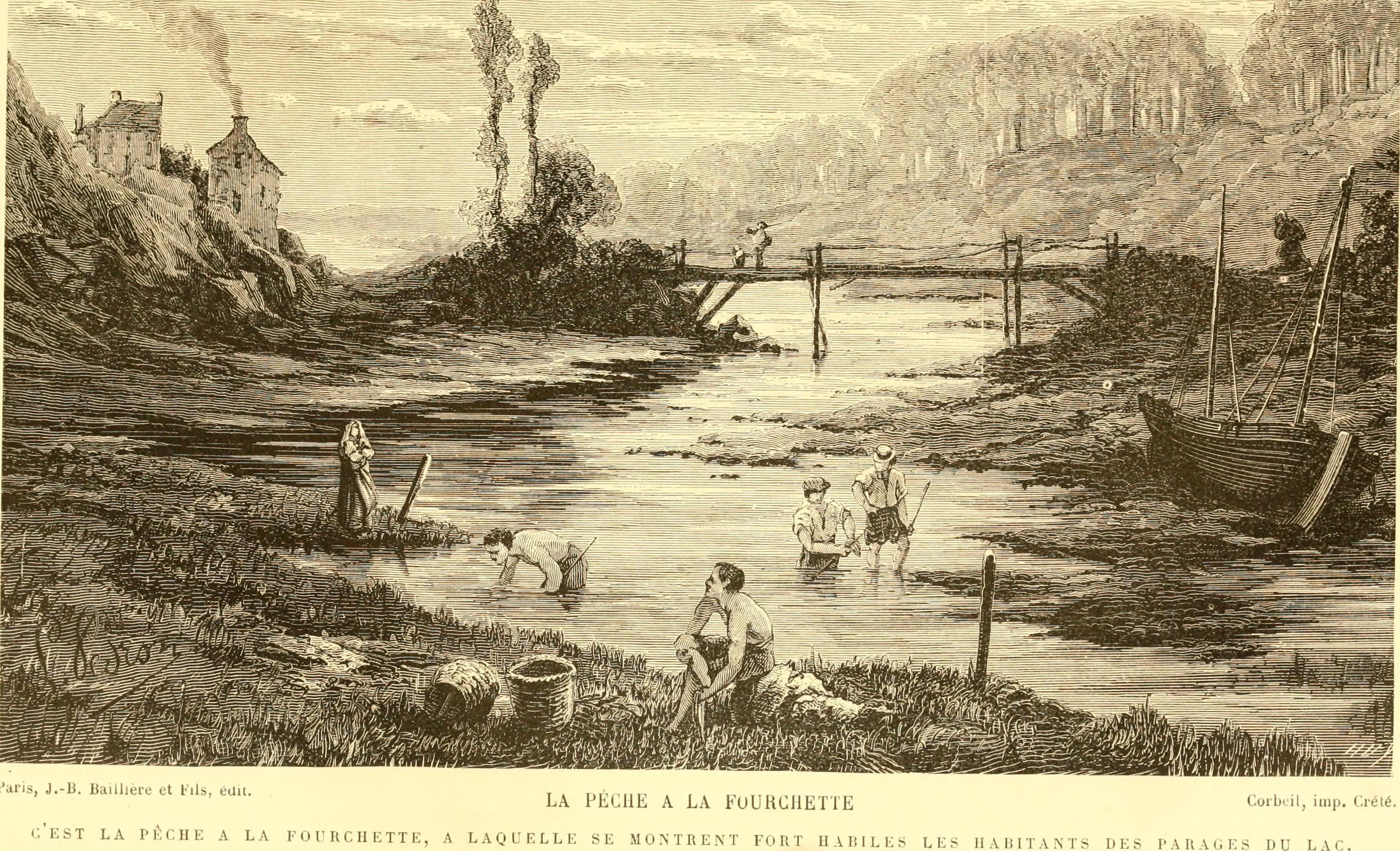 File:Les poissons des eaux douces de la France; anatomie-physiologie ...