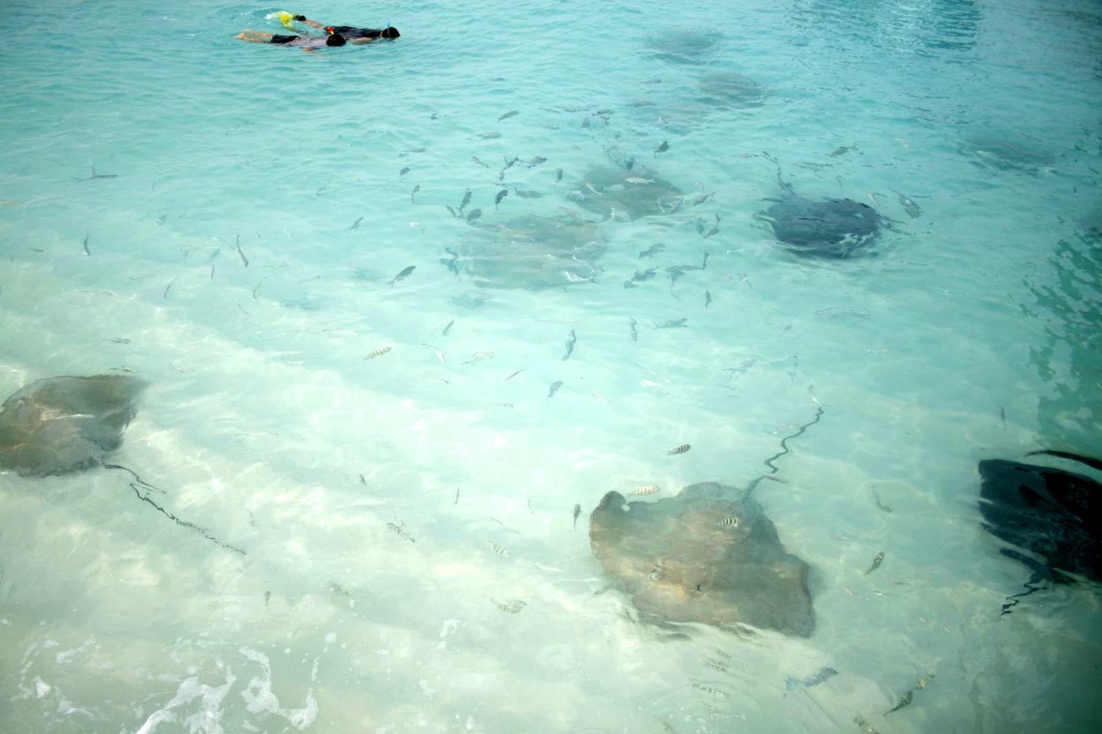 Reethi Beach Resort Baa Atoll Fonimagoodhoo Island Maldives