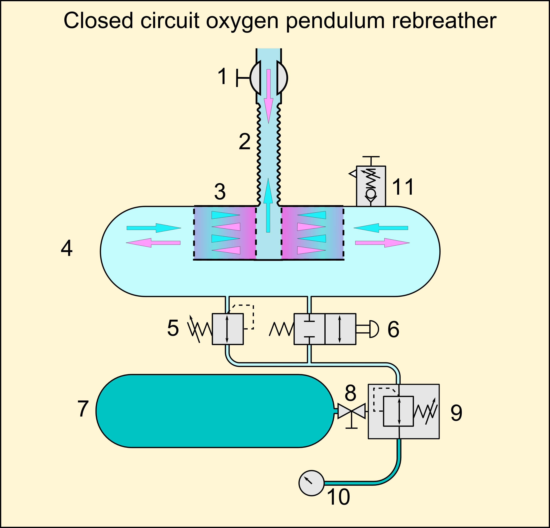 physics in nuclear medicine 3rd edition pdf