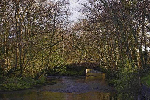 River Gwendraeth Fach, Kidwelly - geograph.org.uk - 58905
