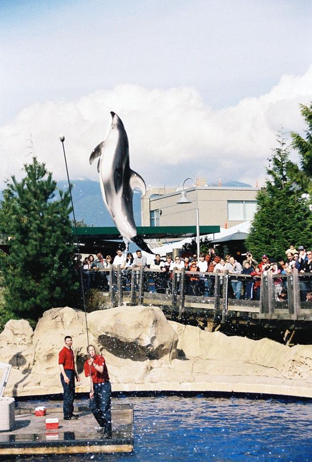 Vancouver Aquarium –...
