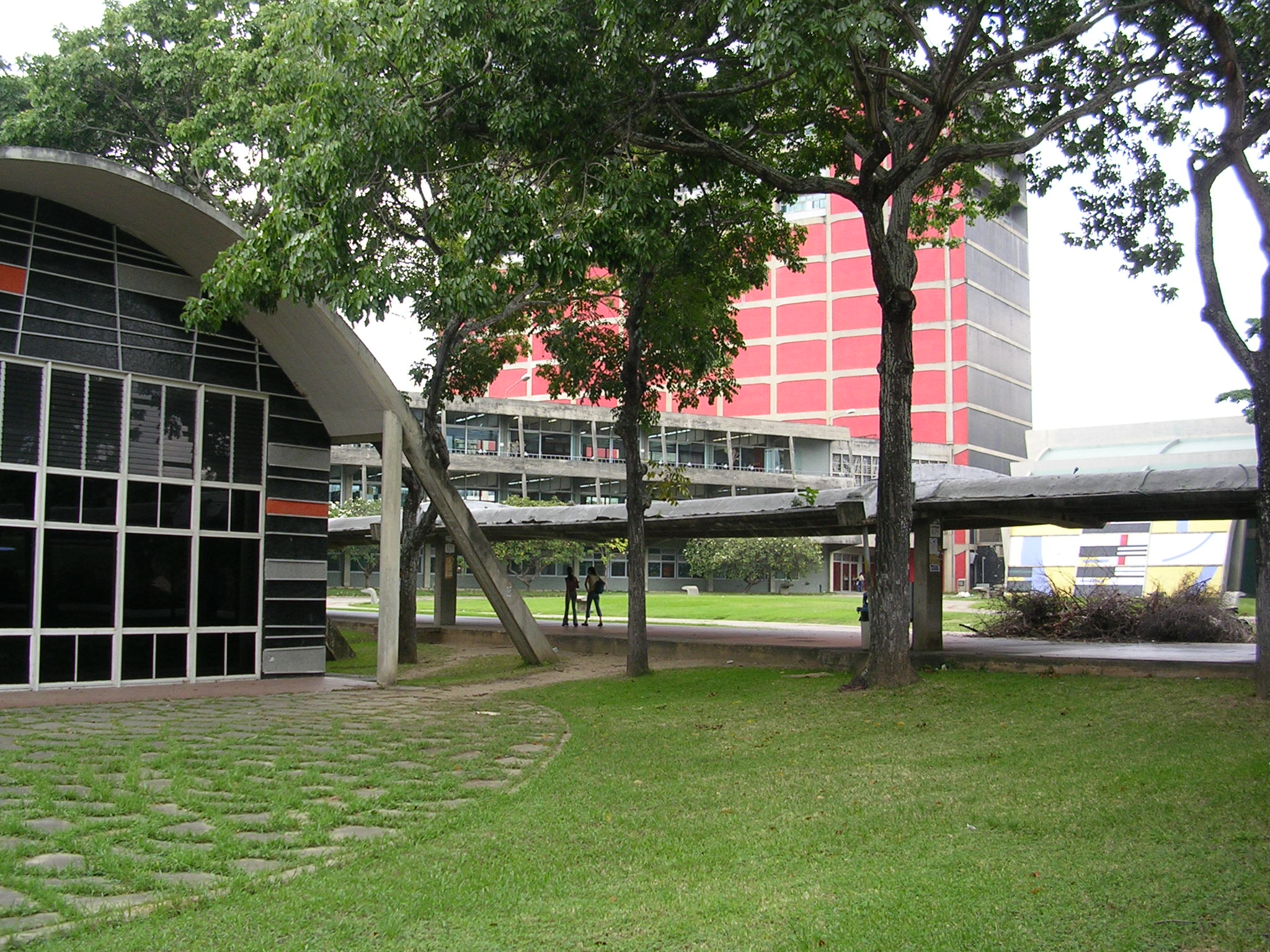 Logo of Central University of Venezuela