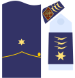 Captain general of the Air Force 12ab.png