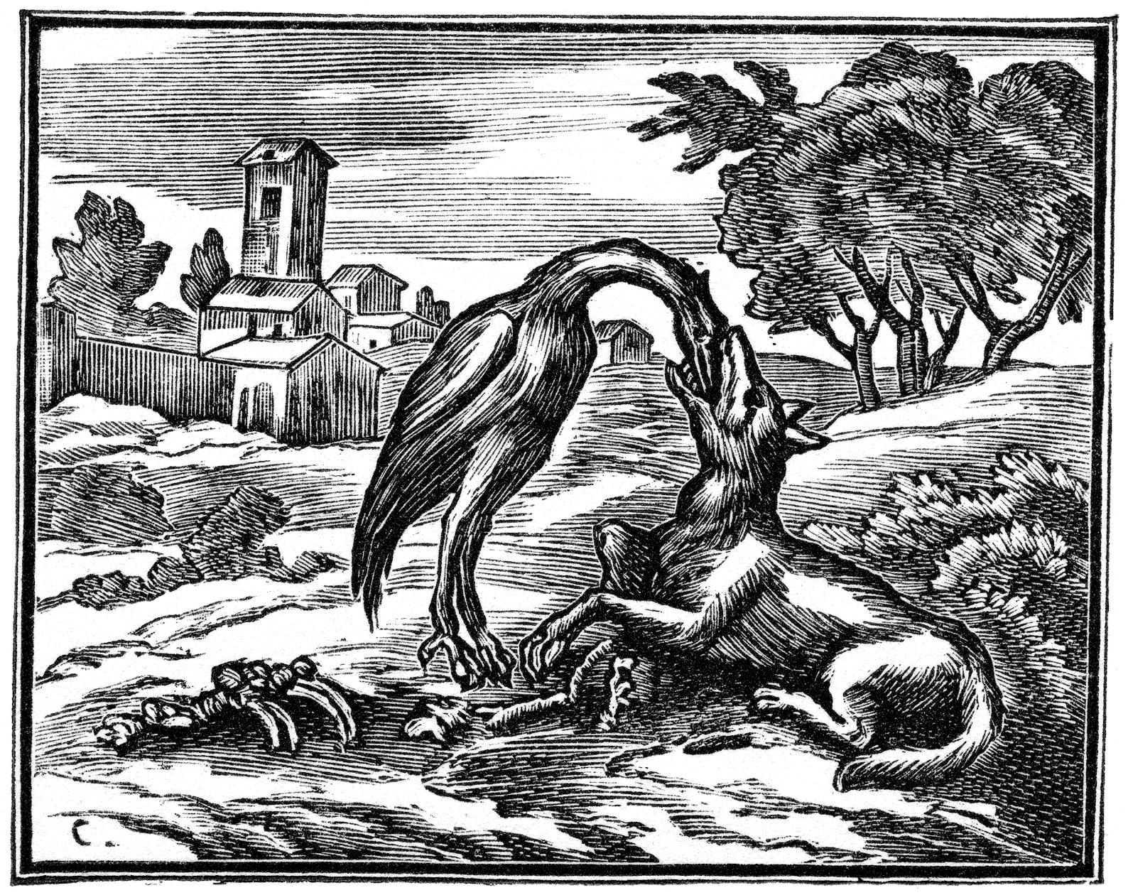 домашний волк и журавль рисунок очень понравилась фериде