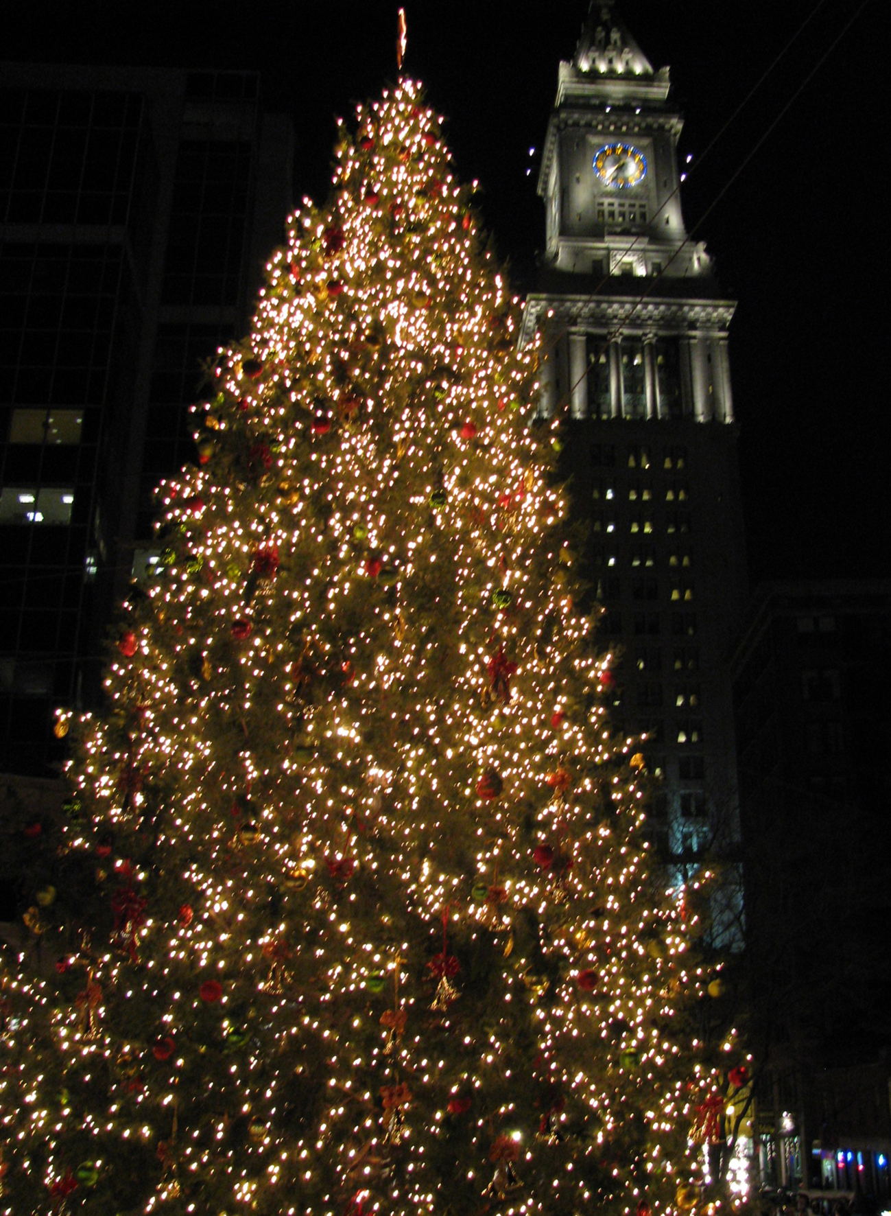 File:Christmas tree near the Quincy Market.jpg - Wikimedia Commons