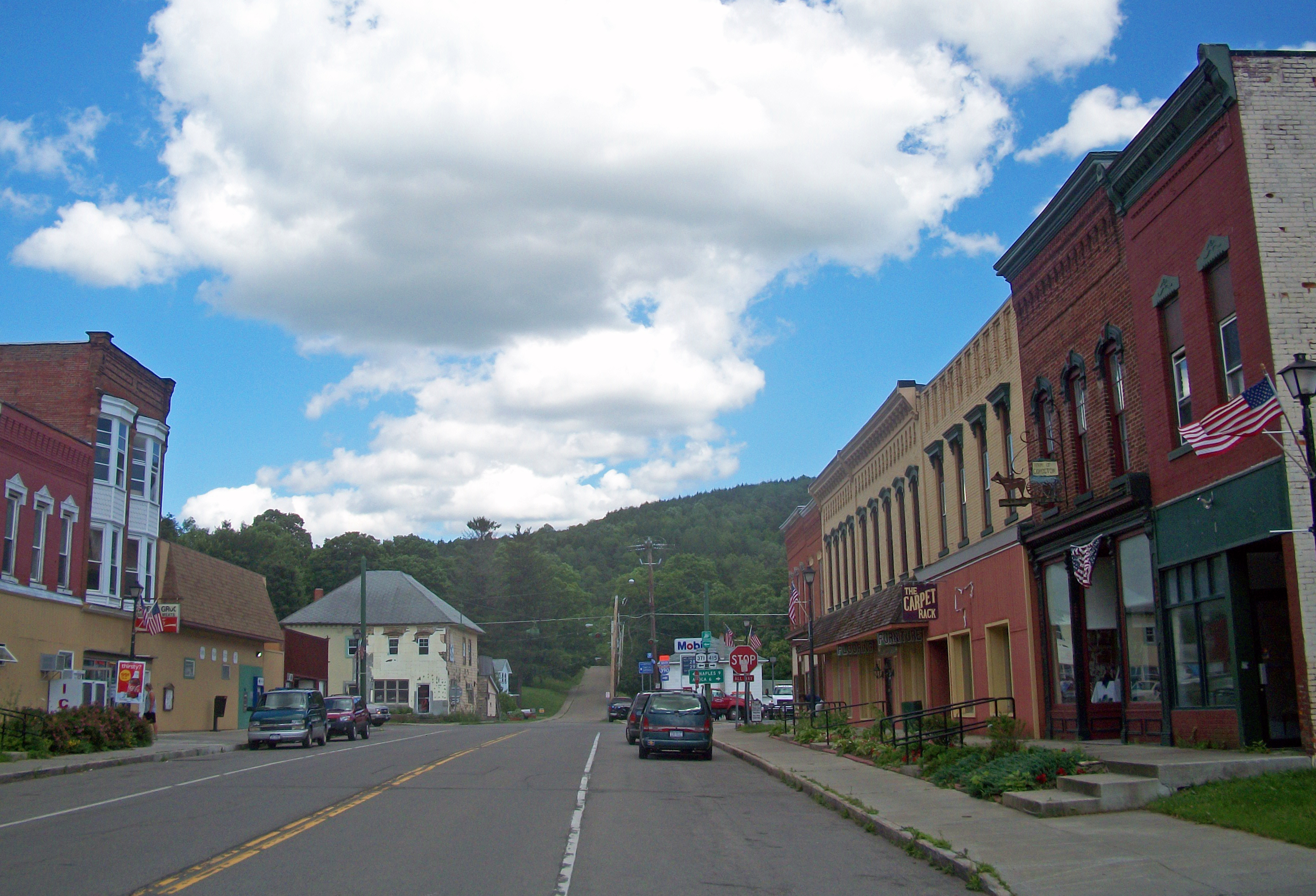 Cohocton (village), New York - Wikipedia, the free encyclopediacohocton town