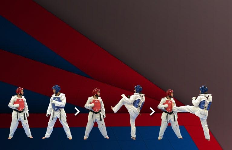 Kick Techniques Taekwondo Taekwondo Front Push Kick