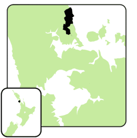 East coast bays electorate 2008.png