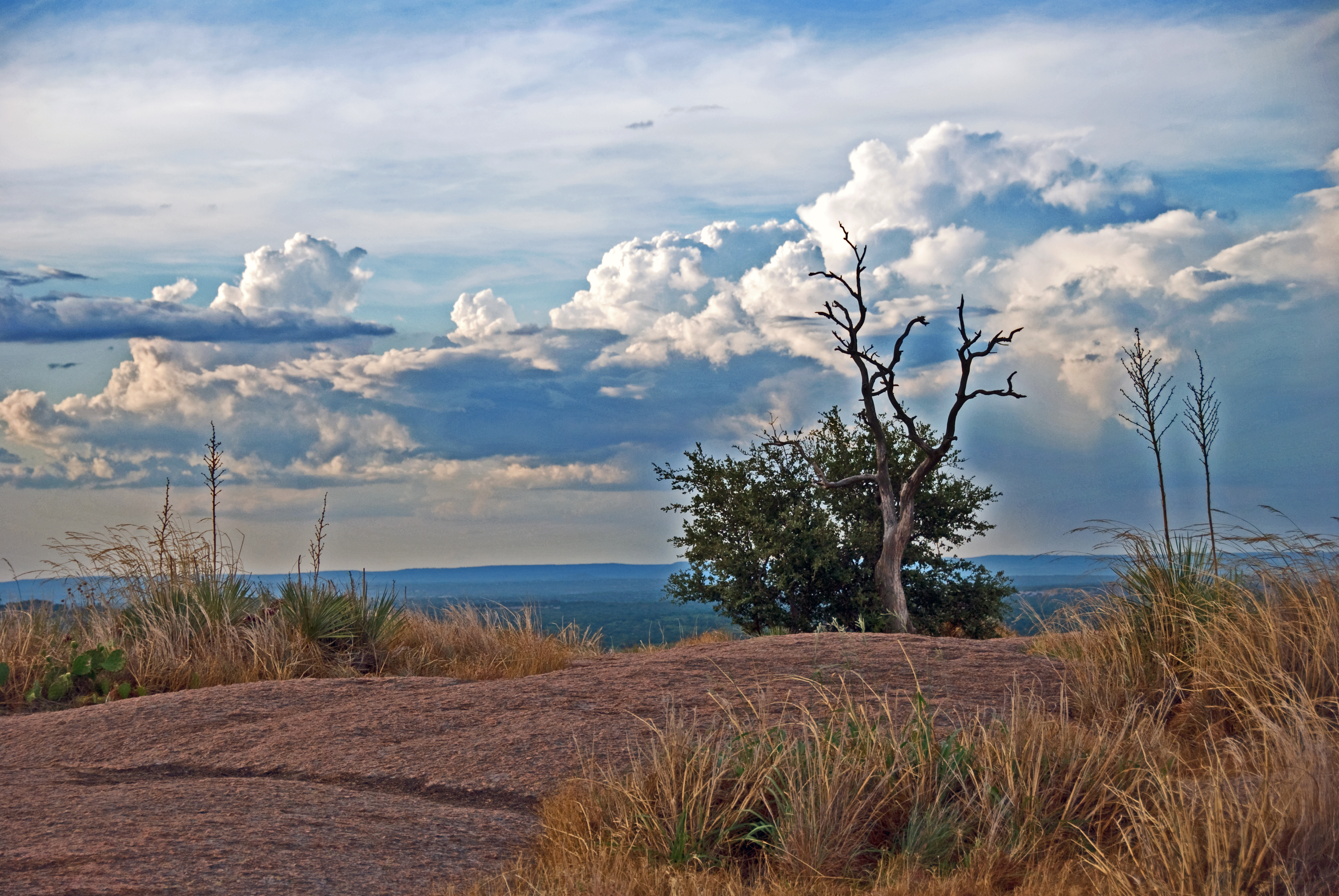 Image result for enchanted rock