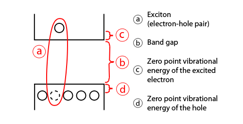 Exciton energy levels