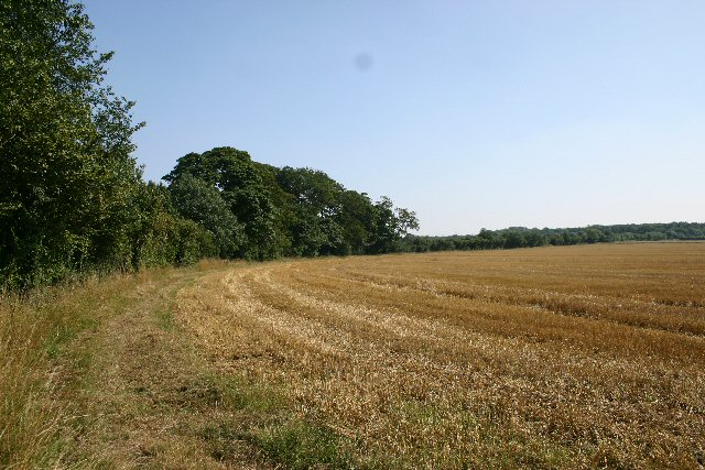 File:Footpath to Desning Hall - geograph.org.uk - 39440.jpg