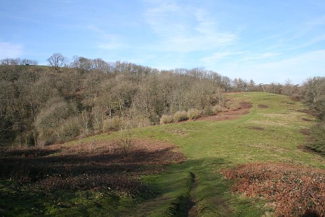 Hollybush Hill - geograph.org.uk - 690096
