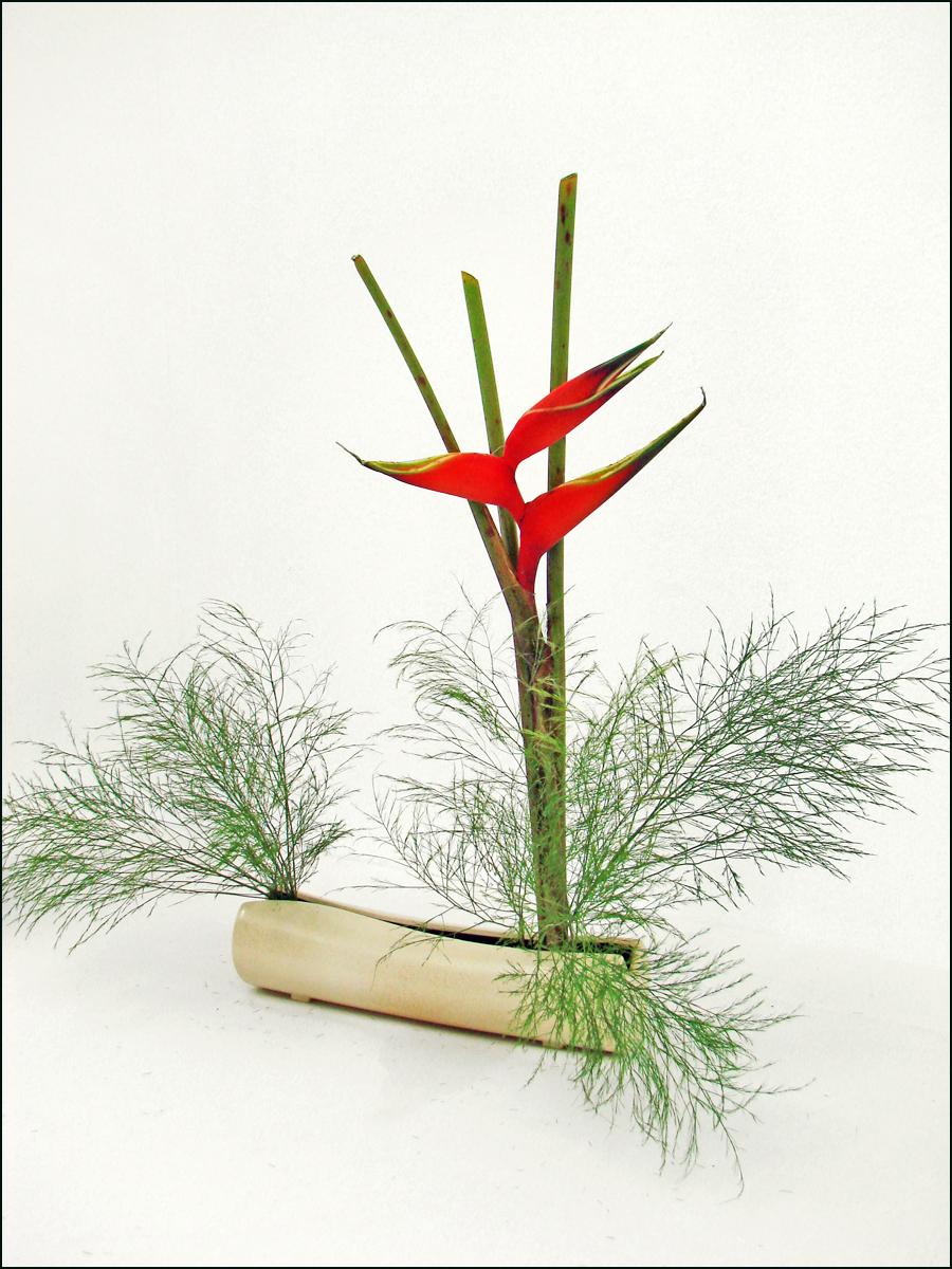 File:Ikebana (Madrid) (4653420102).jpg