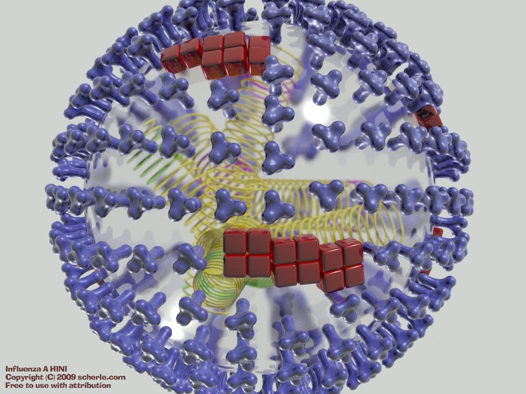 Influenza_a.jpg