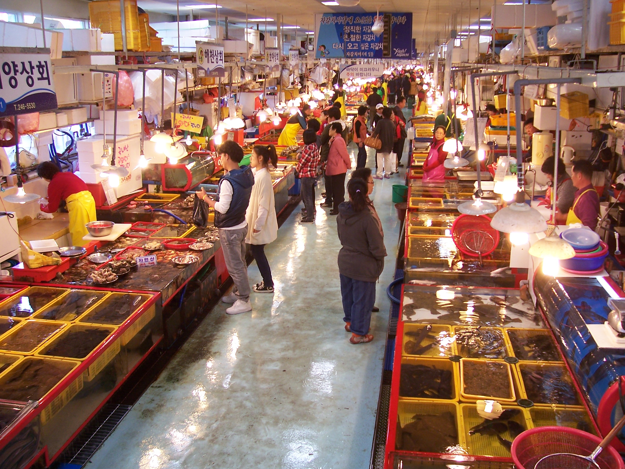 File:Inside Jagalchi Fish Market, Busan.jpg - Wikimedia Commons