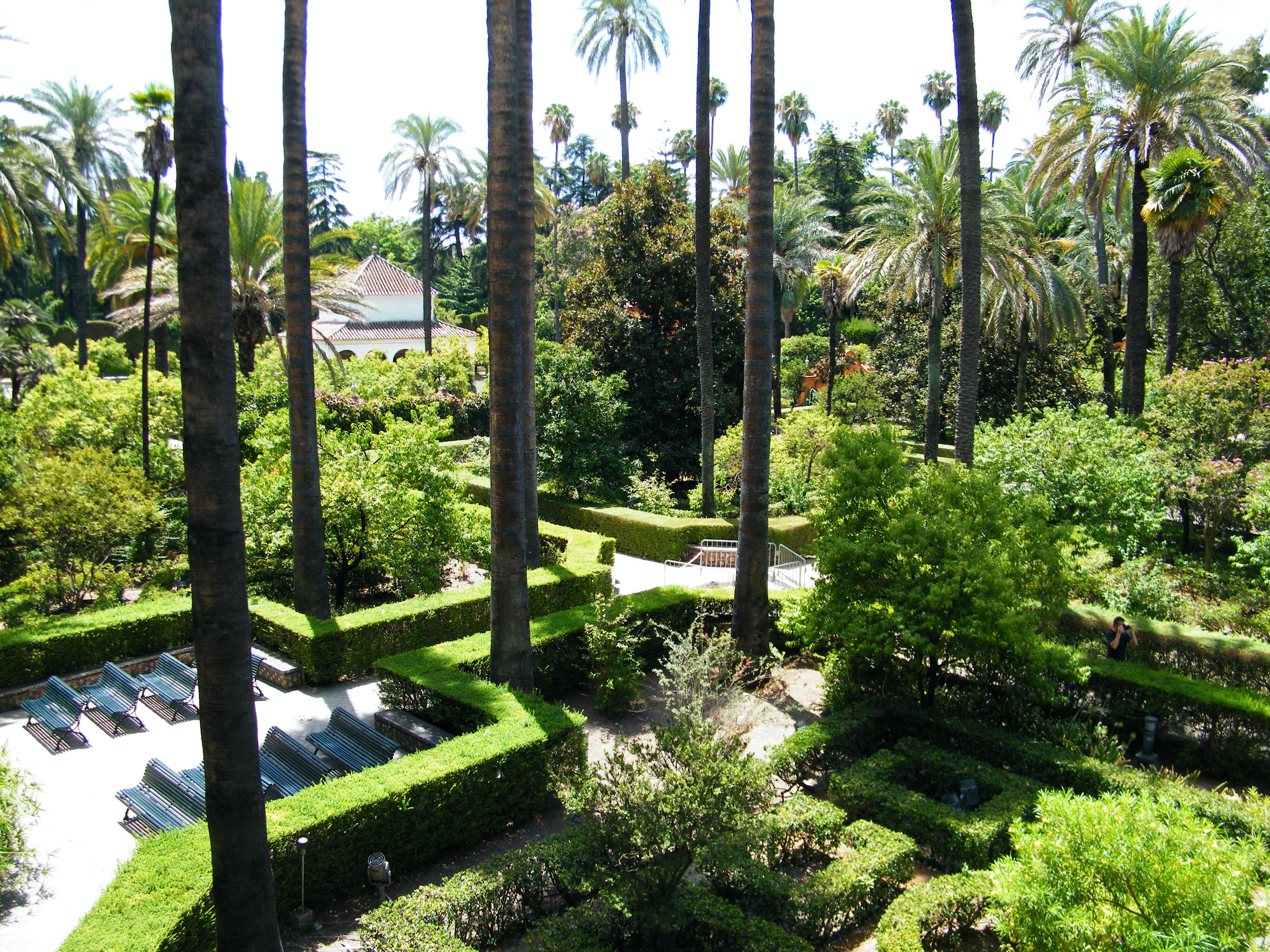Blogosferia reales alc zares de sevilla - Jardines de sevilla ...