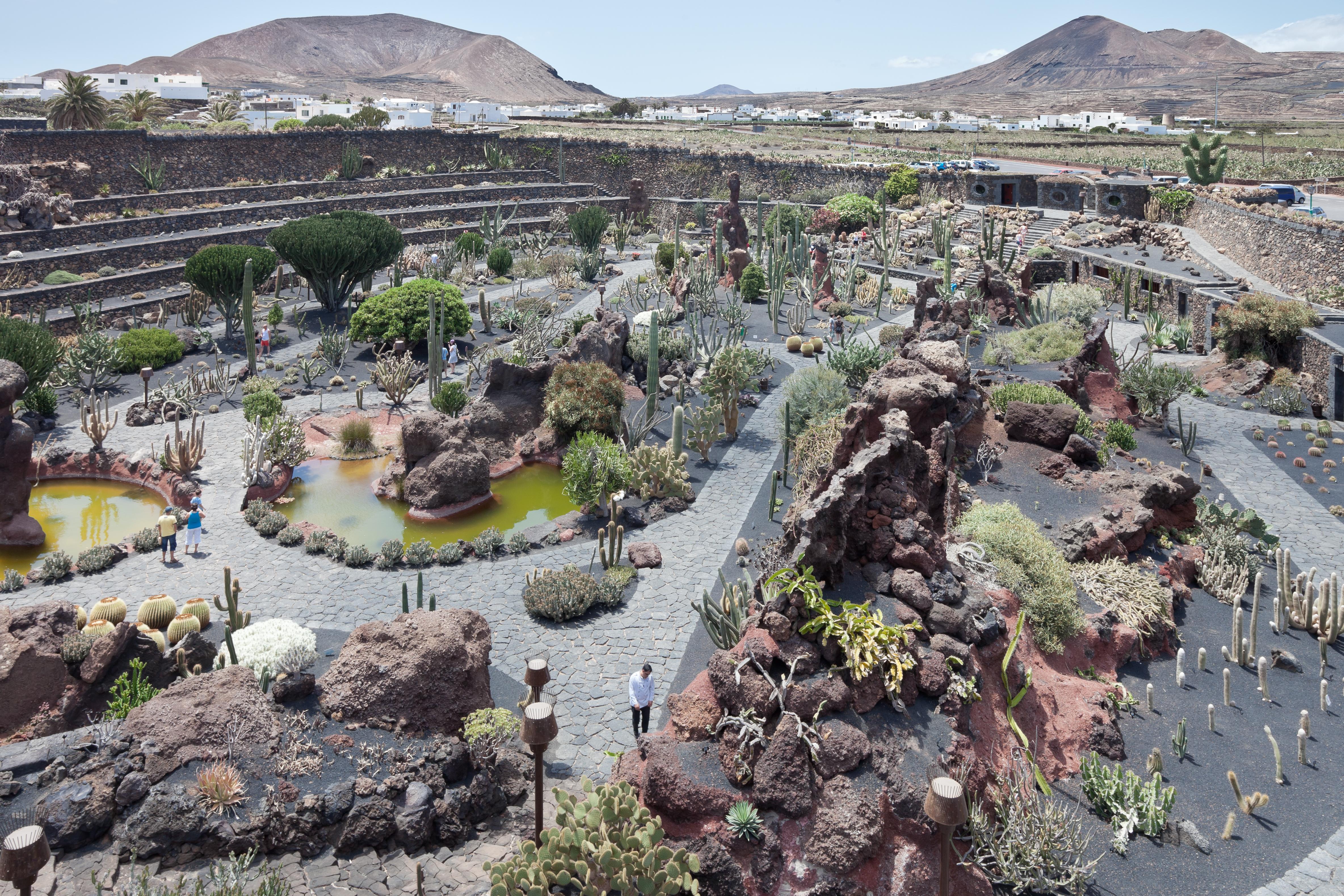 filejardn de cactus guatiza lanzarote j20jpg - Jardn De Cactus