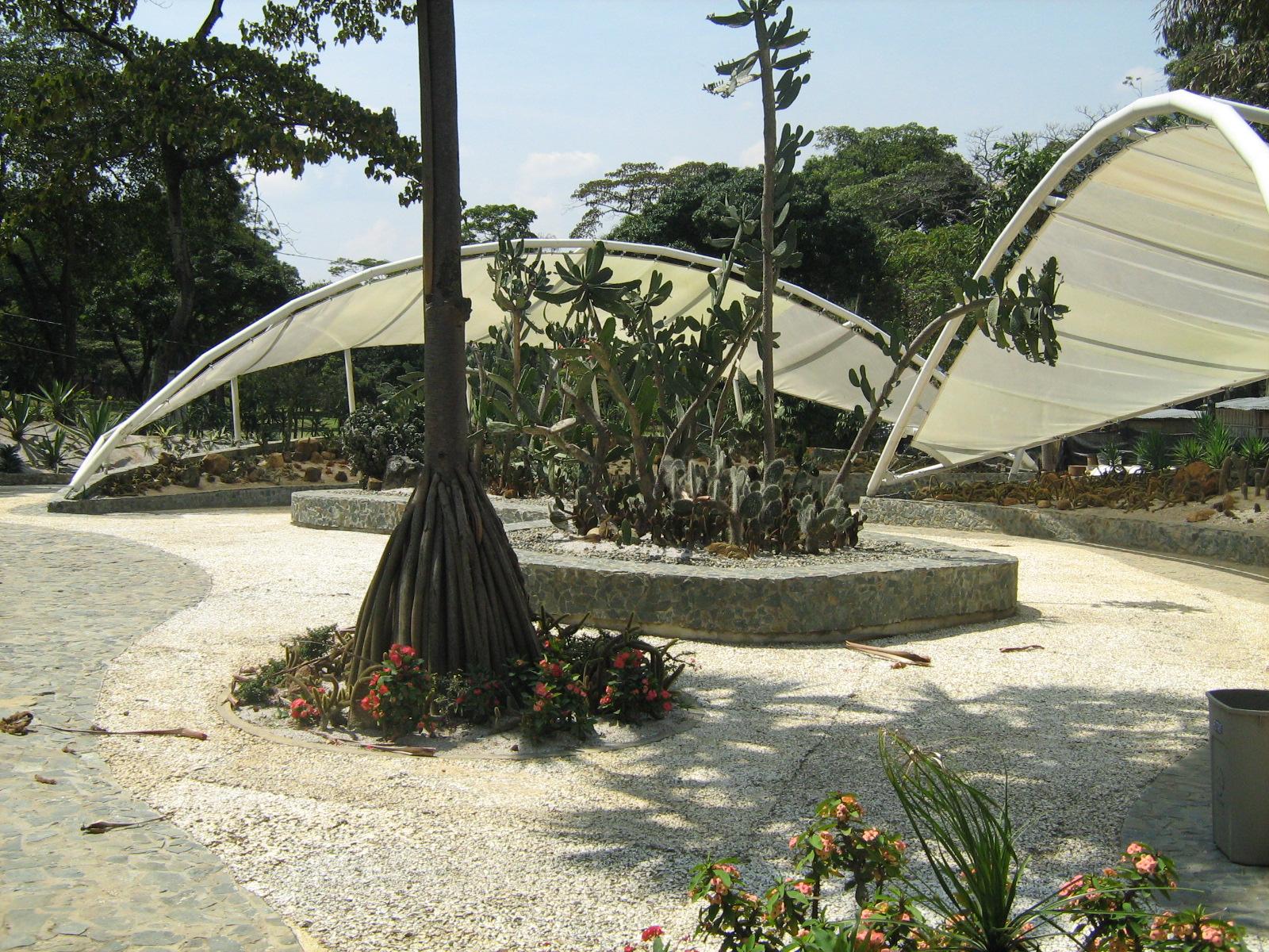 Archivo jardin botanico de medellin jardin del desierto49 for Jardin del desierto