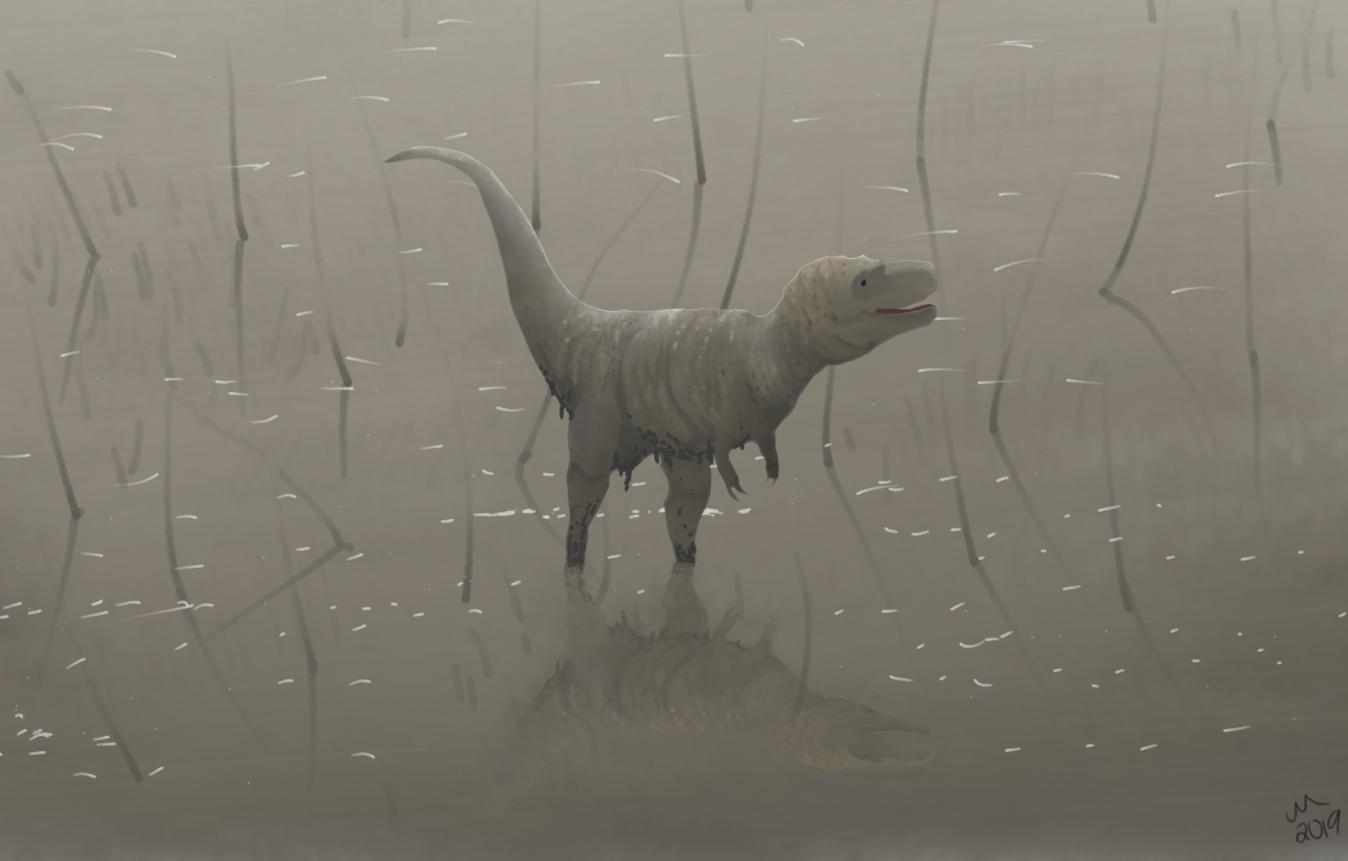 Juvenile Tyrannosaurus in lake.jpg
