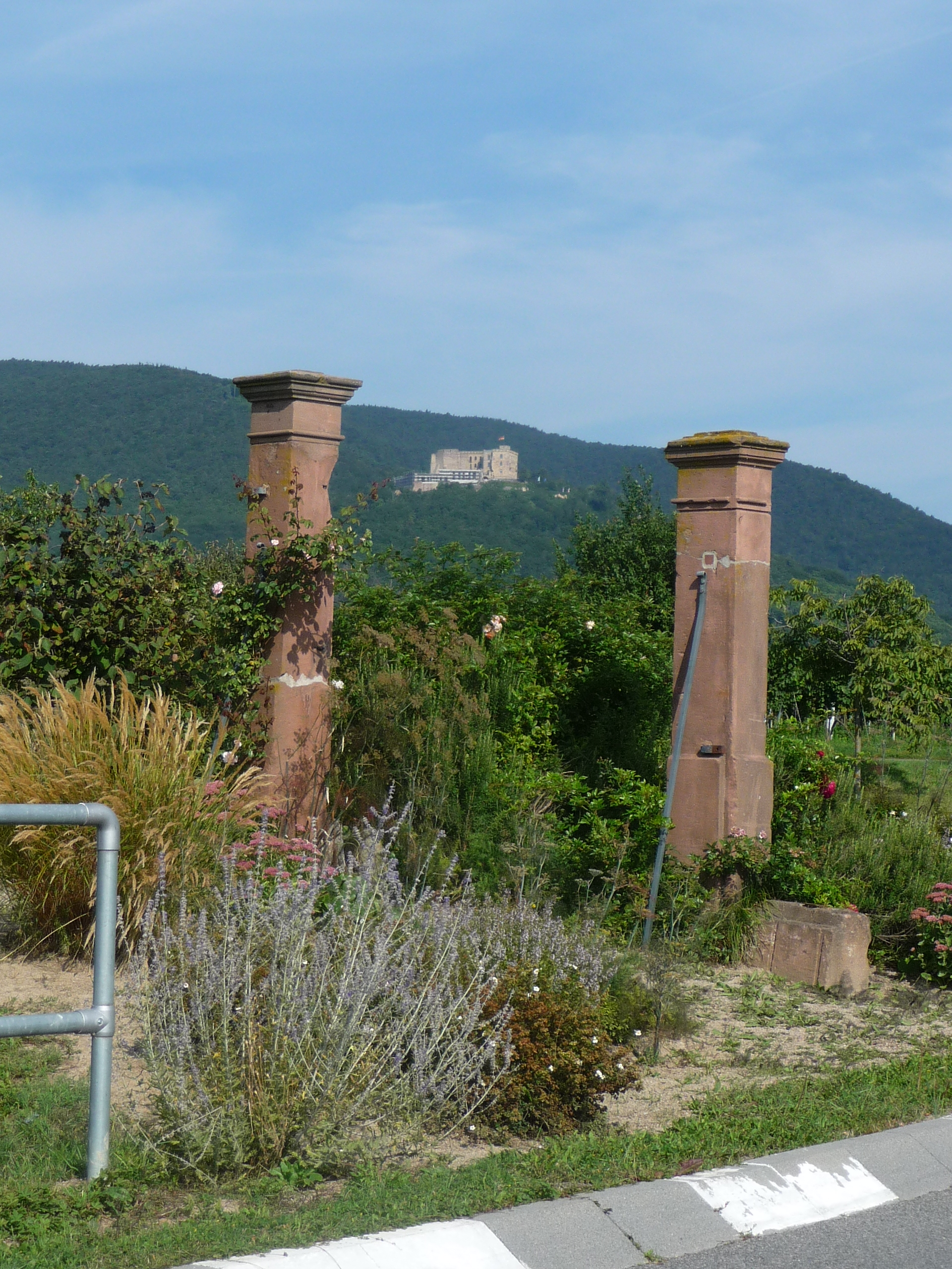 Maikammer – Rhein-Neckar-Wiki