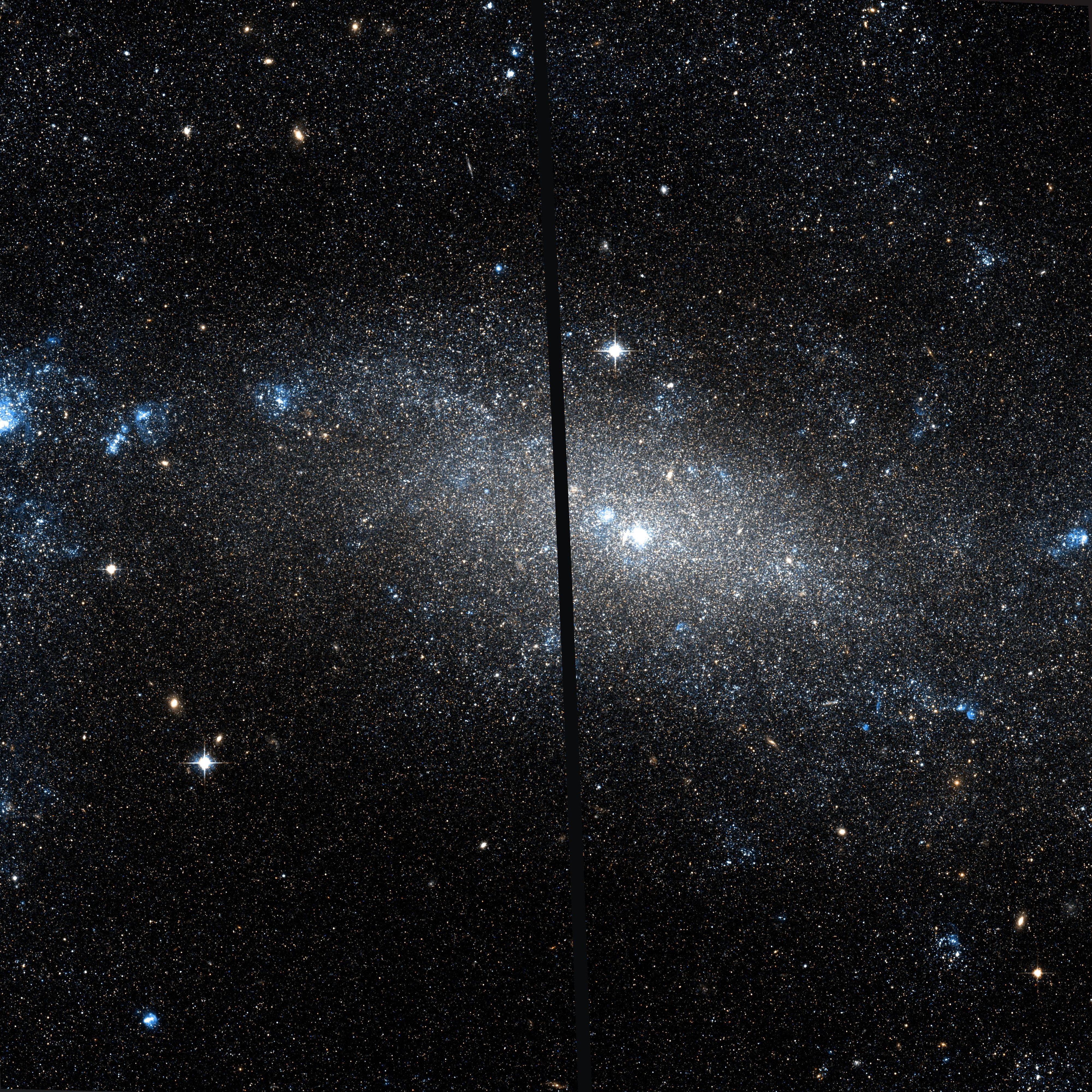 Depiction of NGC 4395