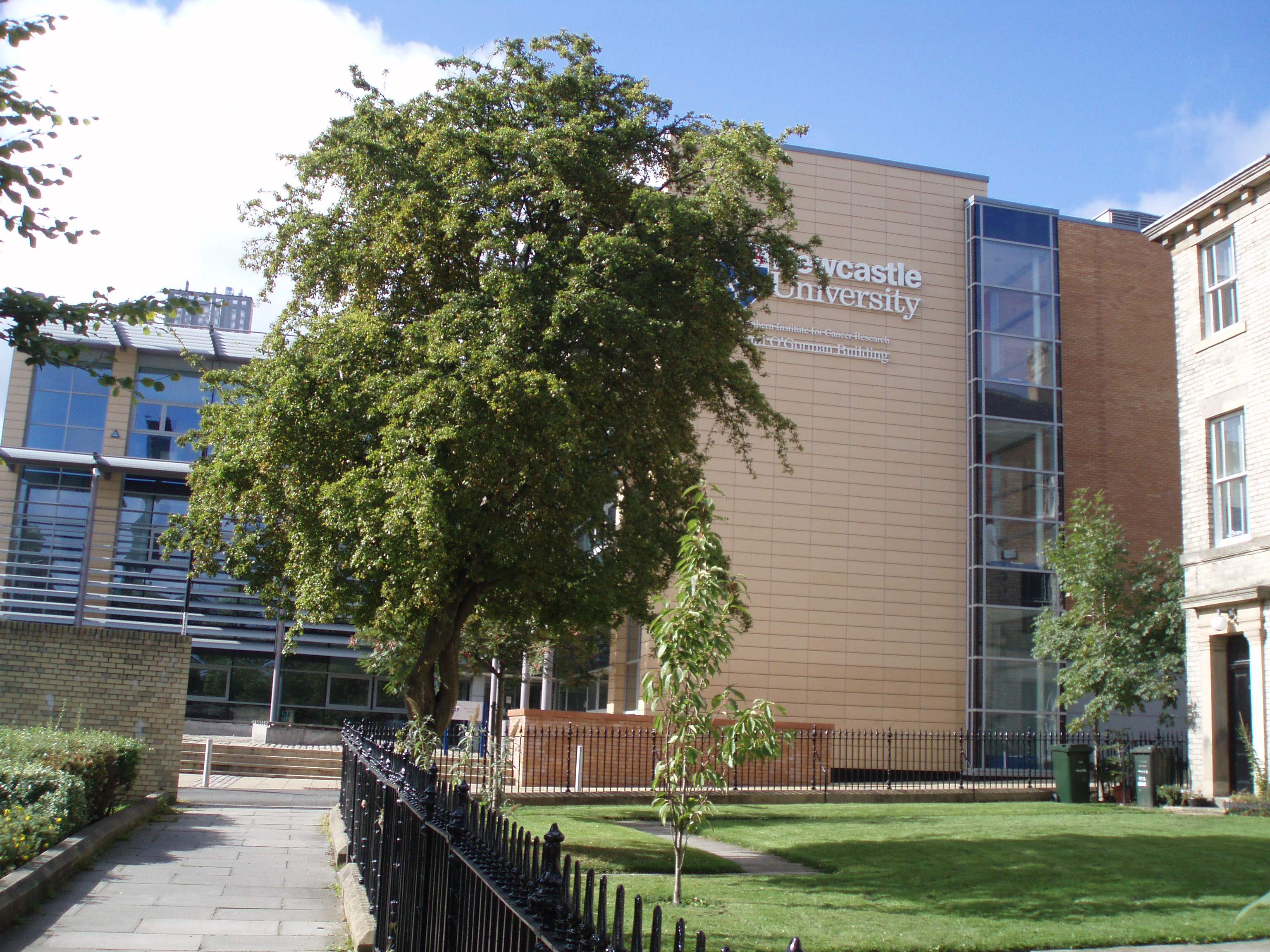 newcastle university thesis guidelines