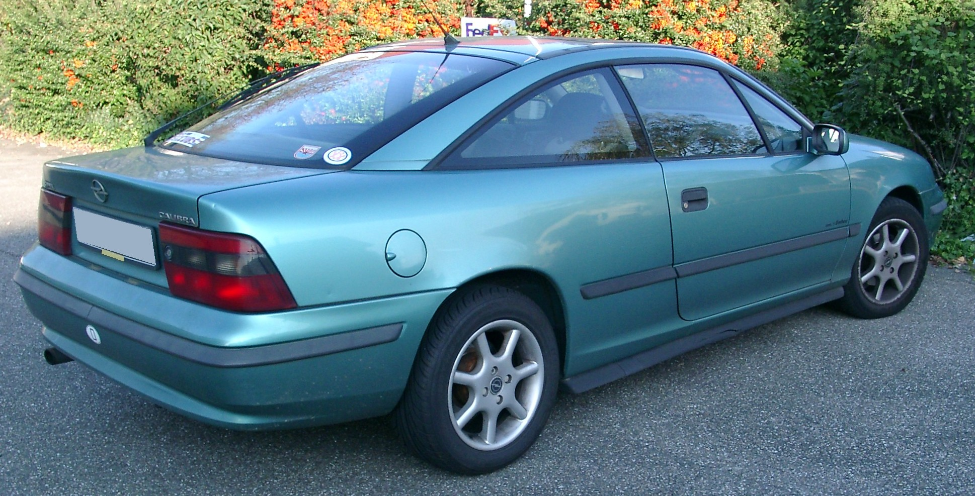 File:Opel Calibra rear 20071007.jpg - Wikimedia Commons