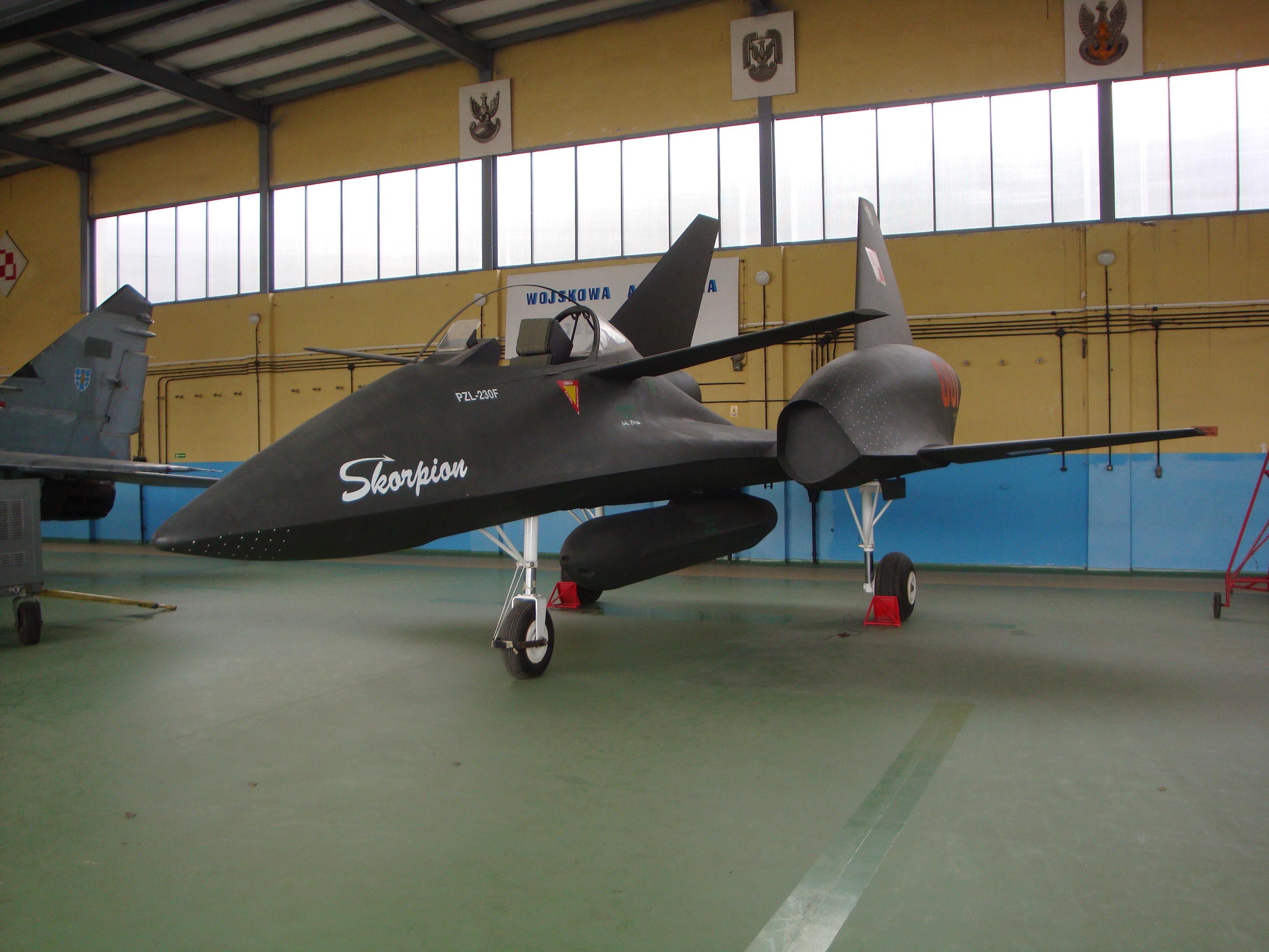 الوداع المؤجل - A-10 Thunderbolt II - صفحة 2 PZL-230F_Skorpion_WAT