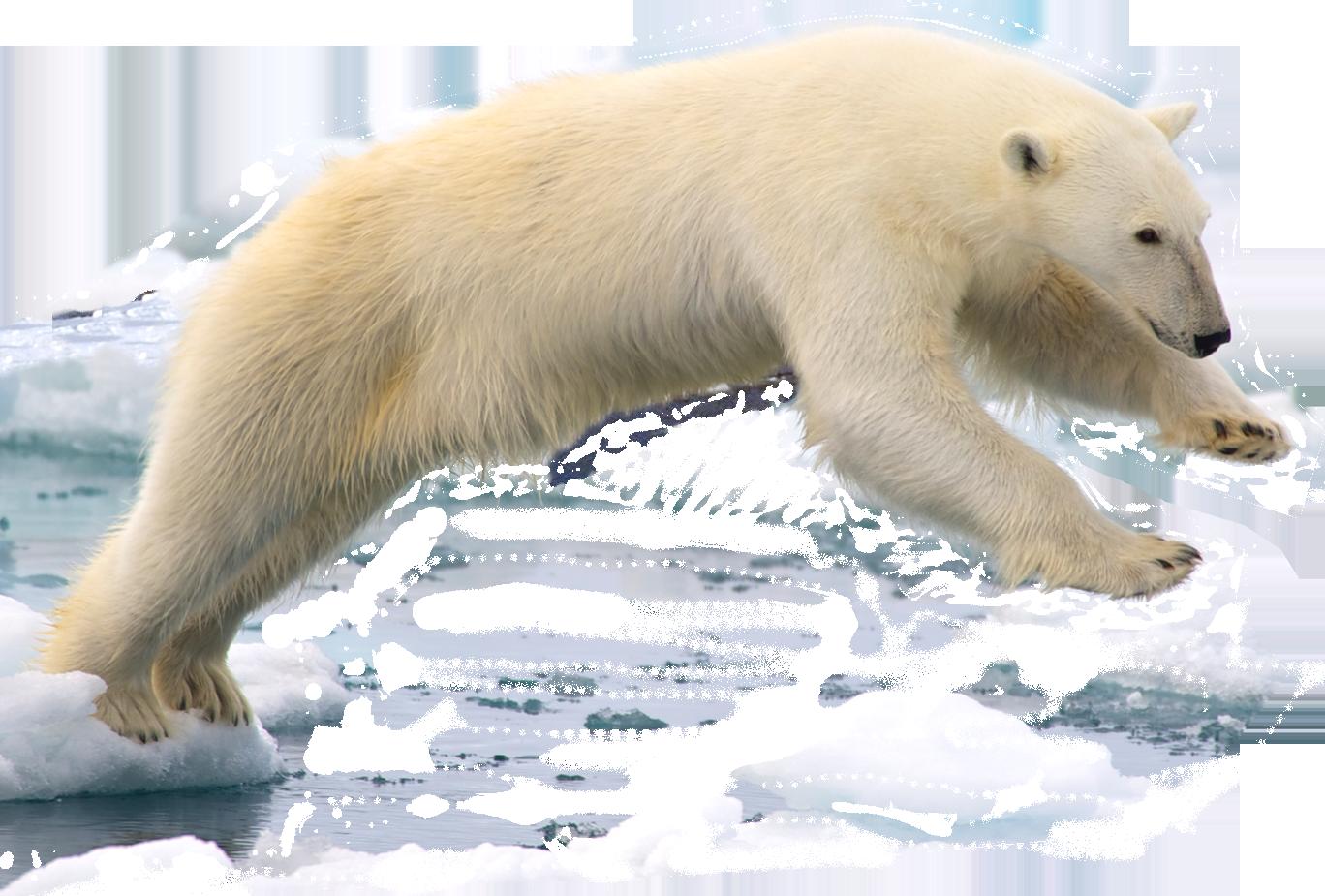 Build A Bear K