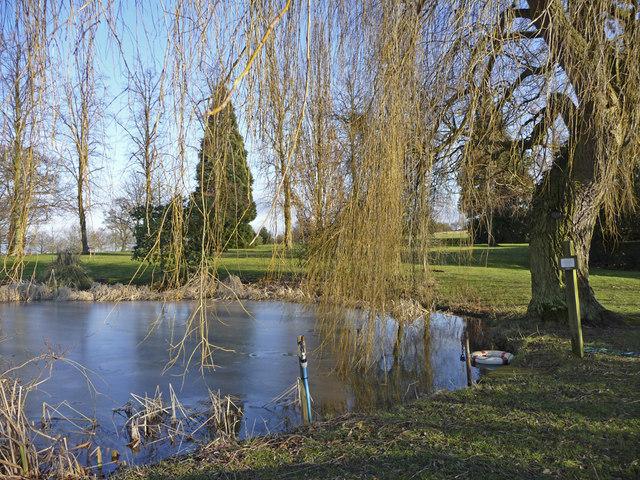 Pond, West Lodge Park, Hadley Wood, Hertfordshire - geograph.org.uk - 1161237