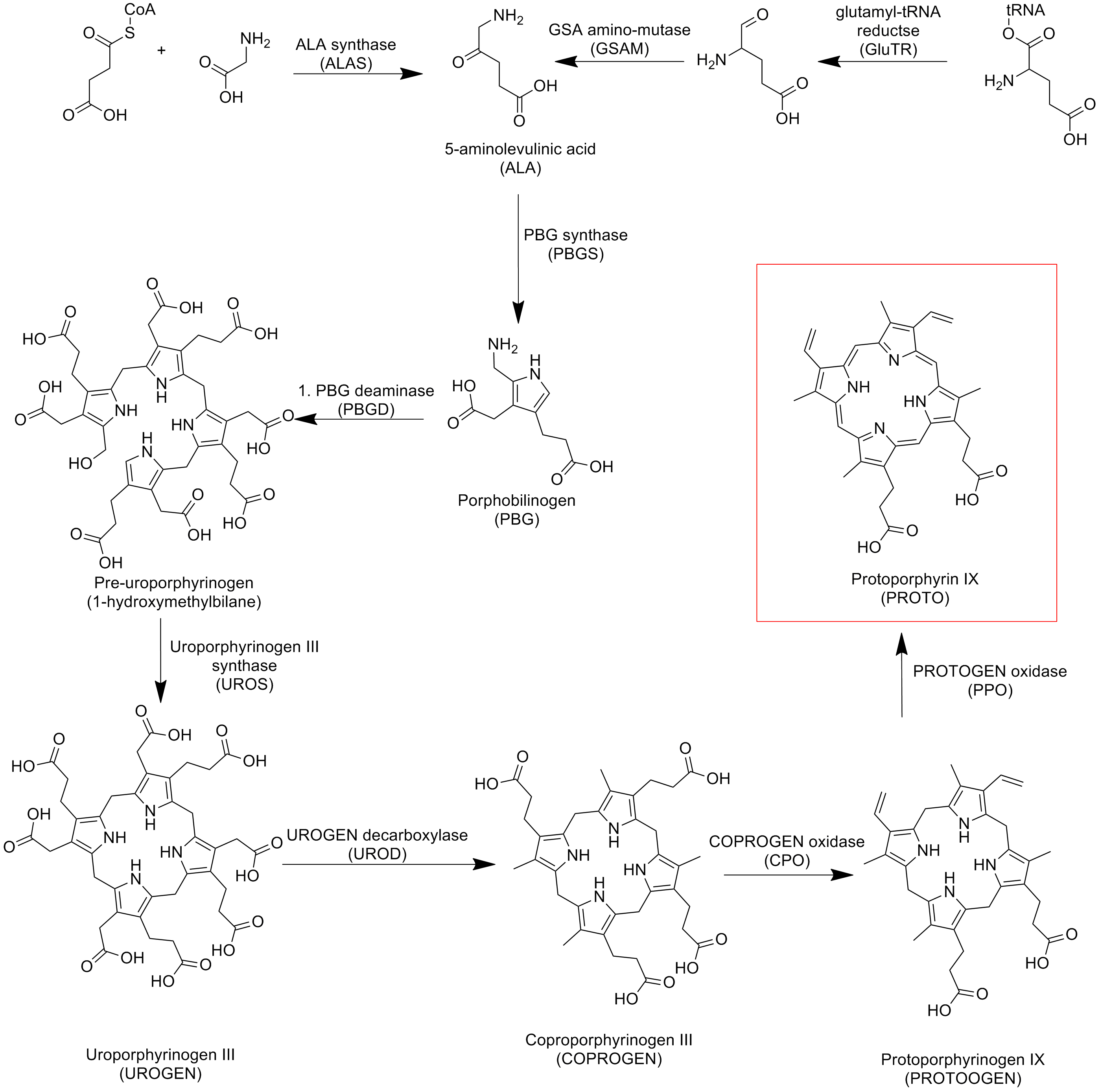 pdf of indoleacetic acid synthesis