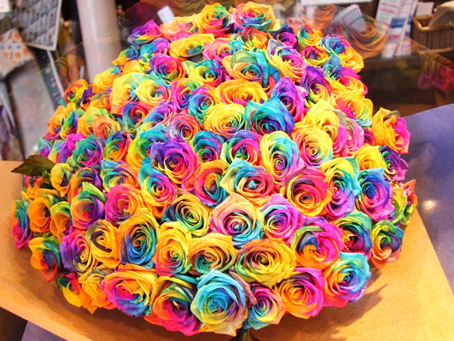 How florists dye flowers proflowers blog for How to color roses rainbow
