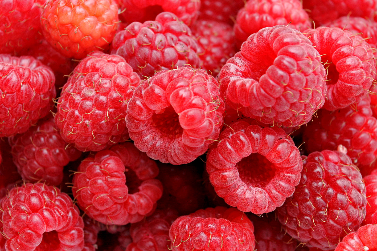 http://upload.wikimedia.org/wikipedia/commons/9/97/Raspberries05_edit.jpg