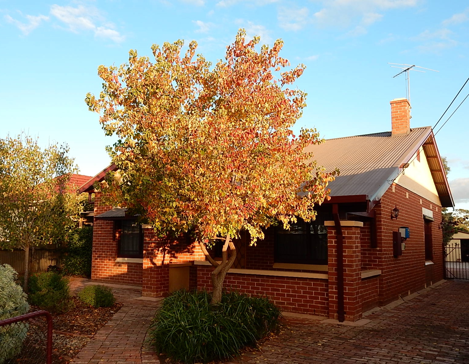 FileRed Brick Bungalow In Beverley South Australia