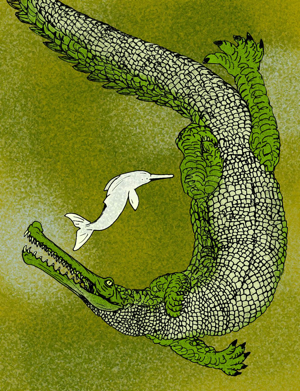 Rhamphosuchus - Wikipedia
