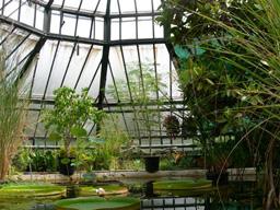 File strasbourg jardin wikimedia commons - Jardin botanique de strasbourg ...