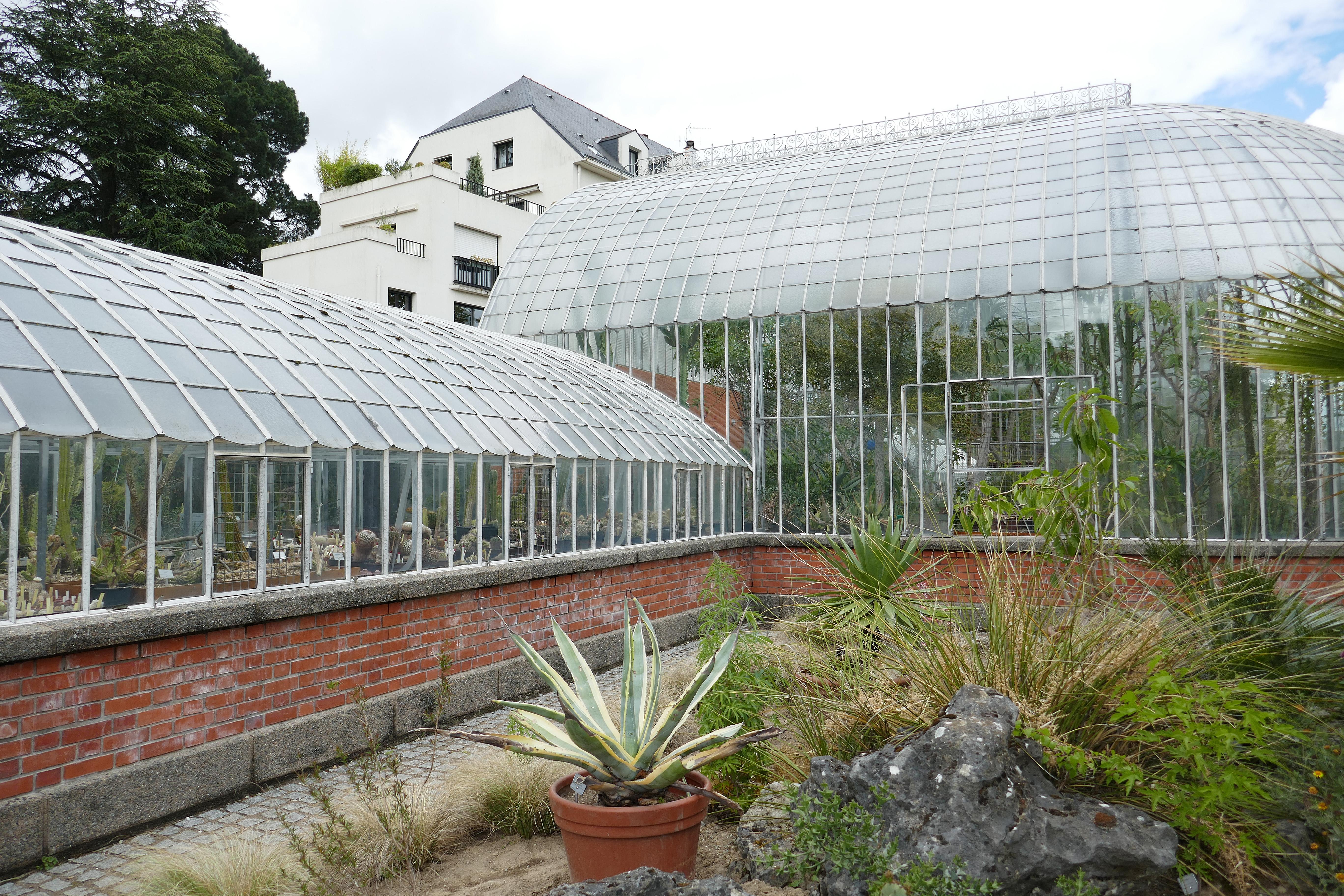 File:Serre des milieux arides-Jardin des plantes de Nantes (2).jpg ...