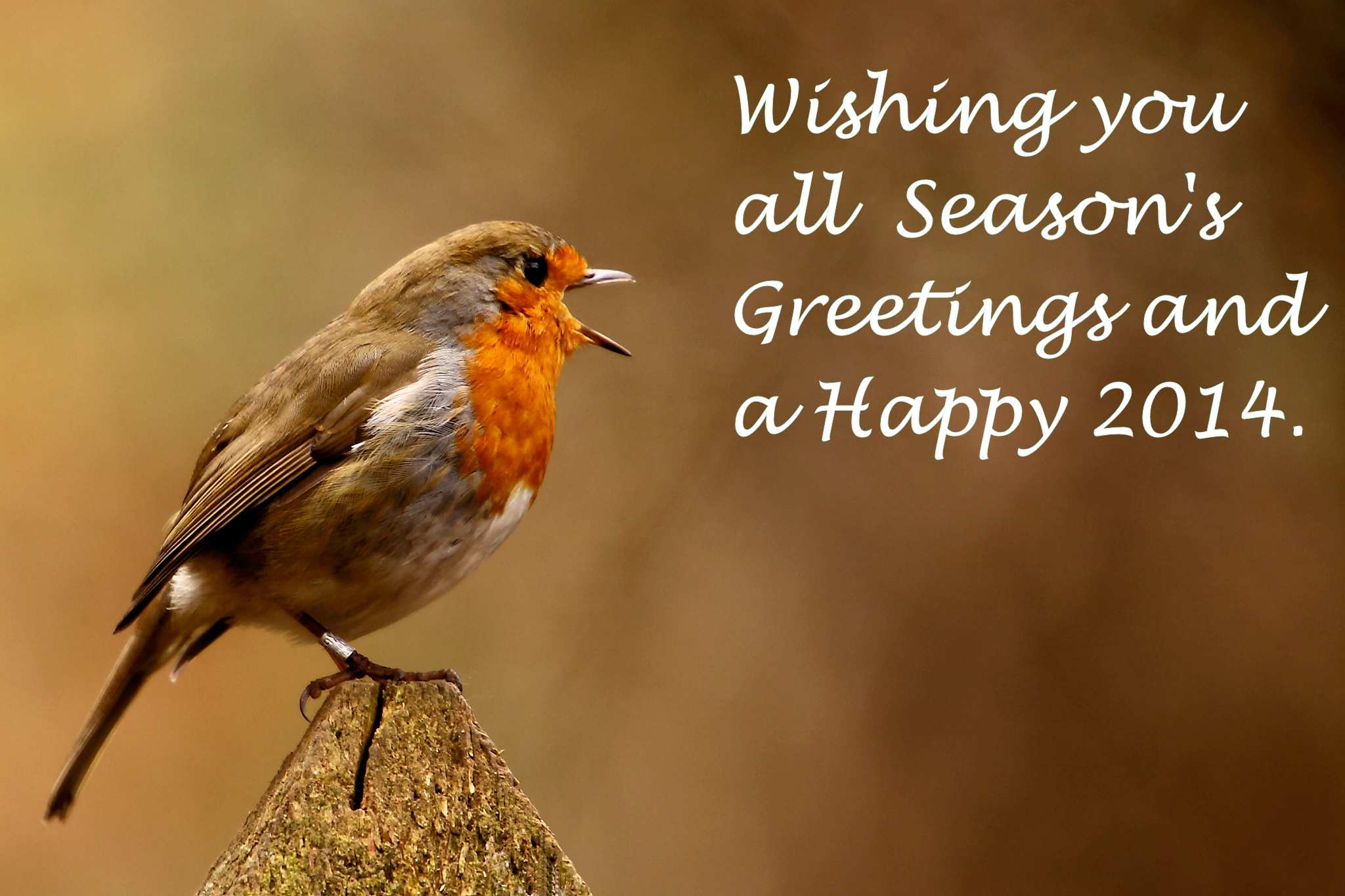 Filewishing You All Seasons Greetings And A Happy 2014g