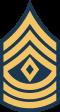 1st Sarg Badge.png