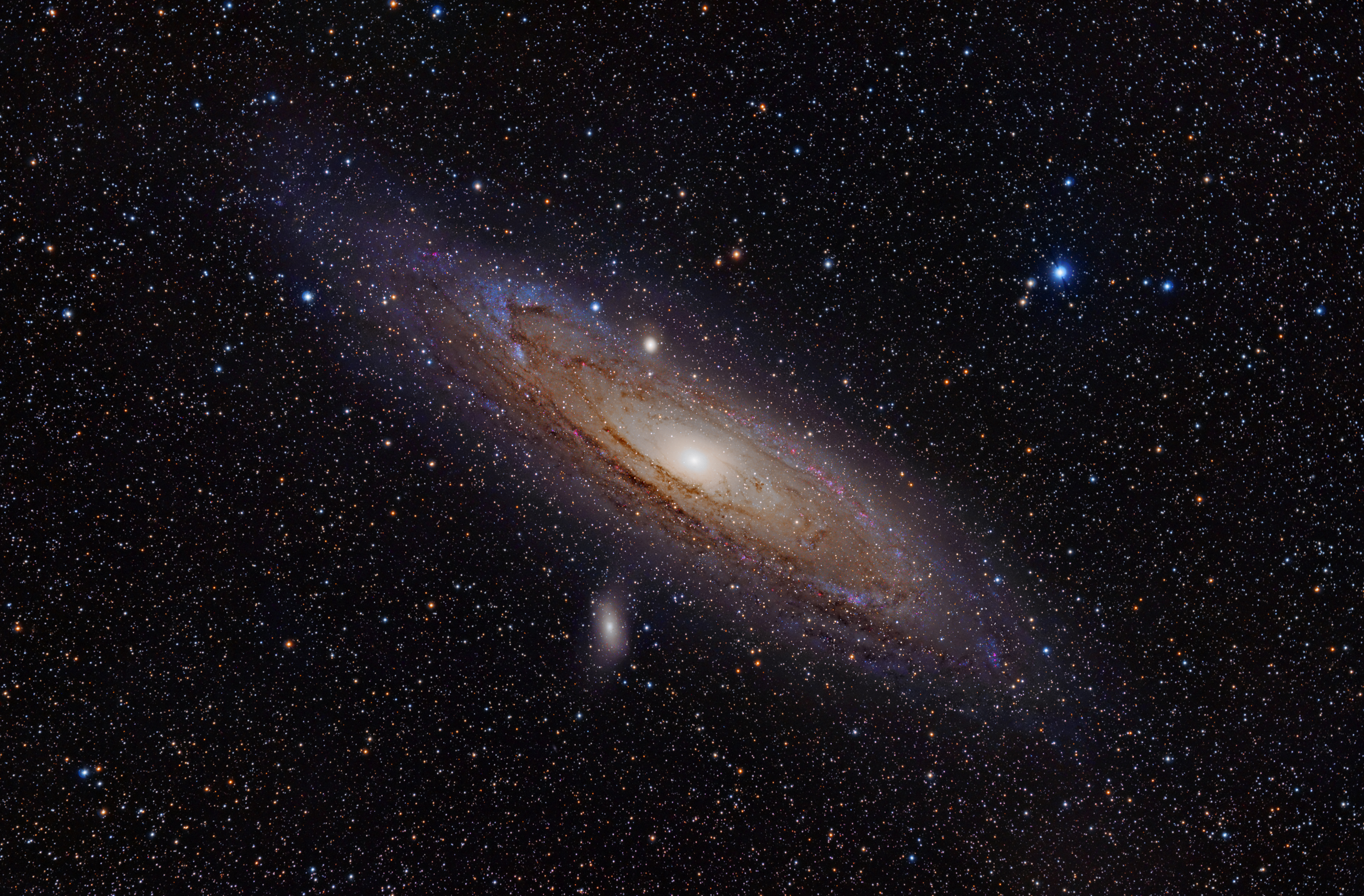 The Andromeda Galaxy - an elliptical galaxy, tilted on its side on a black background. Purple and red swirls of dust are on the outer edges of the galaxy. The galactic centre is a murky white.