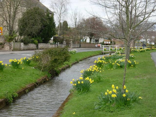 Bishop Monkton village - geograph.org.uk - 781719
